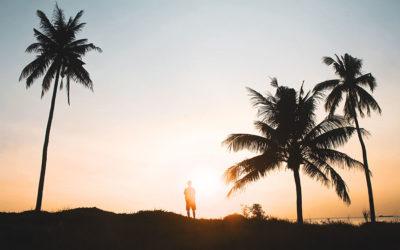 Neuropsicología y Mindfulness